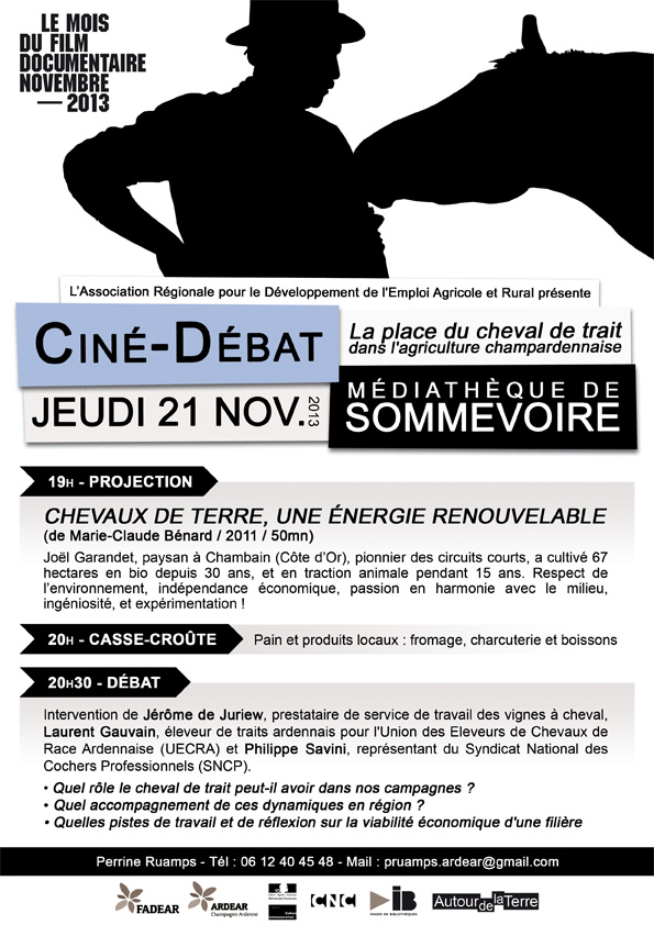 131121-sommevoire_cheval_web