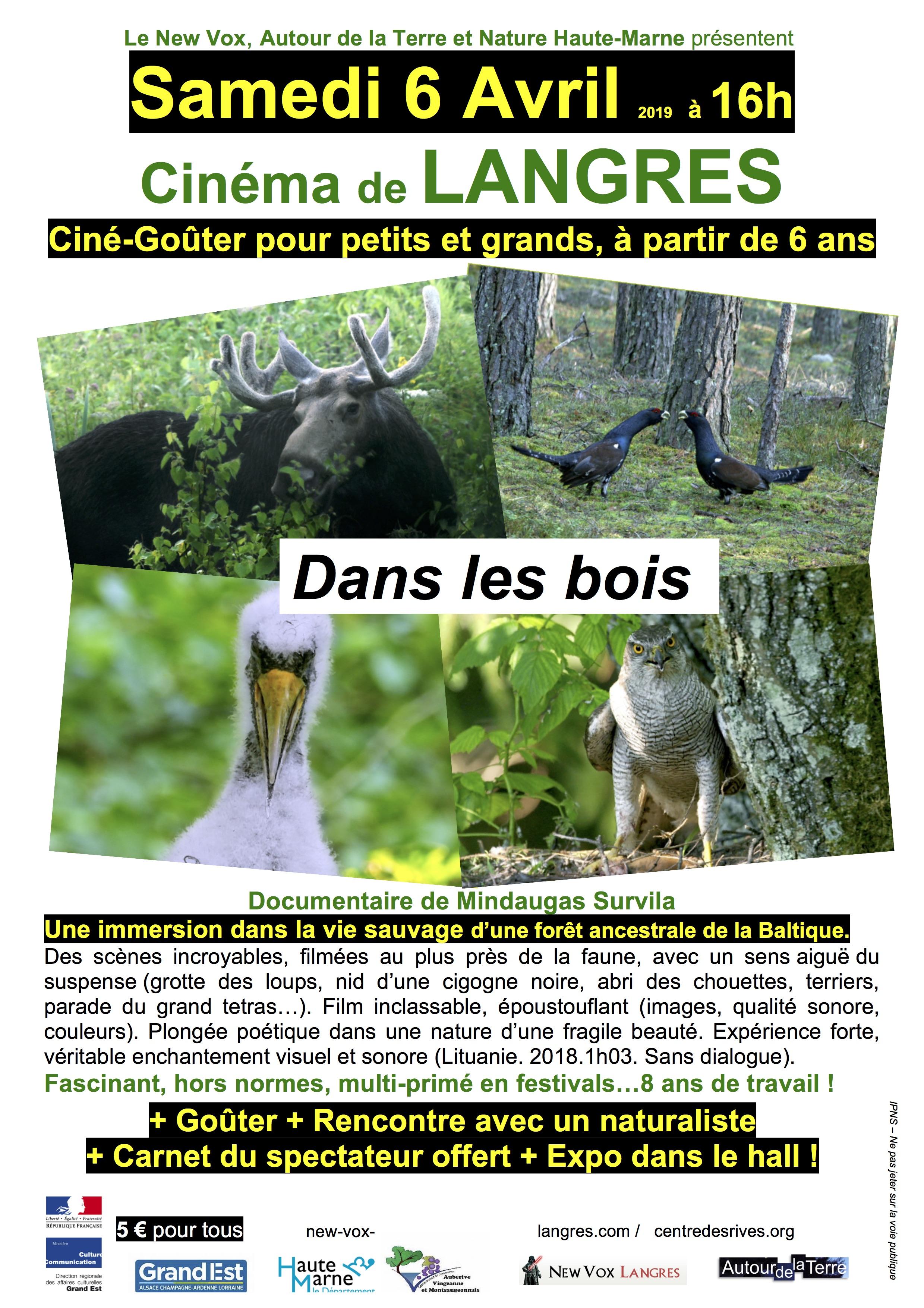 affiche_dans_les_bois_couleur