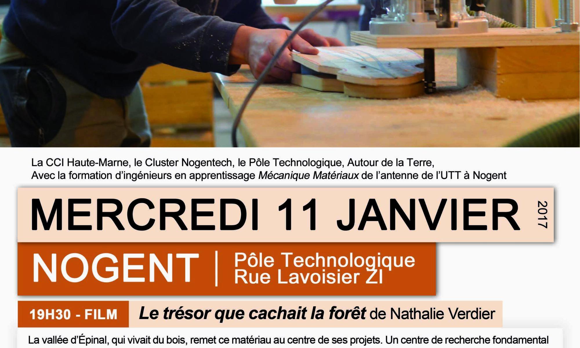 110117_affiche_tresorforet